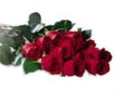 Cello Wrap Roses in Big Rapids, Cadillac, Reed City and Canadian Lakes MI, Patterson's Flowers, Inc.