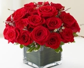 Rose Romance in Woodbridge VA, Lake Ridge Florist