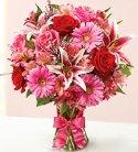 Fields of Europe Romance in Virginia Beach, Virginia, Walker Florist