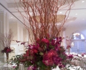 Pink Elegance in Staten Island, New York, Evergreen Florist