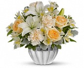 Teleflora's Kiss Me Softly in Chicago IL, Ambassador Floral Co.