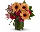 Gresham Flowers - Be a Flirt - Beaumont Florist