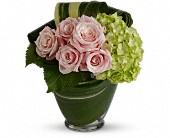 Cosmopolitan Pink in Bound Brook NJ, America's Florist & Gifts