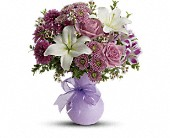 Teleflora's Precious in Purple in Elgin IL, Town & Country Gardens, Inc.