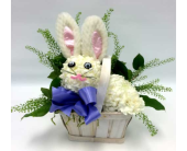 Easter Bunny in Belleville ON, Live, Love and Laugh Flowers, Antiques and Gifts
