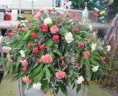 Carnation Family Spray in Tuscaloosa, Alabama, Amy's Florist
