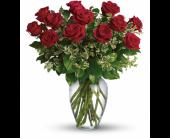 San Jose Flowers - Always on My Mind - Dozen Roses - by Citti's Flori - Santa Clara Citti's Florist