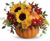 Spring Flowers - Teleflora's Pretty Pumpkin Bouquet - Wildflower Florist