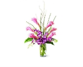 Tropicala Arrangement in Smyrna GA, Floral Creations Florist