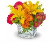 Atlanta Flowers - Summertime Splash - Floral Creations Florist