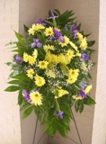 Daisies A Plenty Spray in Lake Charles LA, A Daisy A Day Flowers & Gifts, Inc.