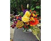 Summer Bliss in Takoma Park MD, Park Florist