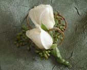 White Rose Boutonniere in Campbell, California, Jeannettes Flowers