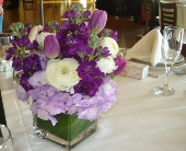 Tulip and Ranunculus Centerpiece in Campbell, California, Jeannettes Flowers