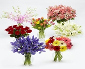 Monthly Flower Gift Plan, picture
