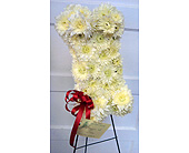 From the Granddogs in Fincastle, Virginia, Cahoon's Florist and Gifts