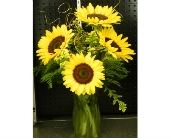6 Sunflower Arrangement in Mililani Town HI, Mililani Town Florist