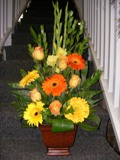 Fall Fest Bouquet in Lake Charles LA, A Daisy A Day Flowers & Gifts, Inc.