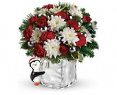 Teleflora's Send a Hug Penguin Bouquet in San Clemente CA, Beach City Florist