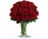 Love and Devotion - Long Stemmed Red Roses in Lubbock TX, The Fig and Flower