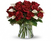 Be Still My Heart - Dozen Red Roses in Largo FL, Rose Garden Flowers & Gifts, Inc