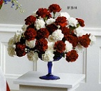 Red and /White Carnation Arrangement in Roselle IL, Roselle Flowers