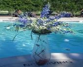 Accent Arrangement in Chelsea, Michigan, Gigi's Flowers & Gifts