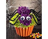 Halloween in Aston PA, Wise Originals Florists & Gifts