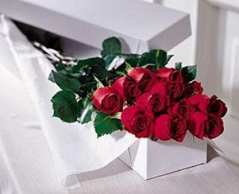 The FTD� One Dozen Boxed Roses in Highlands Ranch CO, TD Florist Designs