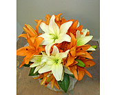 Delicate Asiatic Lillies in St. Petersburg FL, Hamiltons Florist