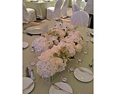Silver & White in St. Petersburg FL, Hamiltons Florist
