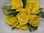 Hand-tied with Yellow Roses in Elkland PA, The Rainbow Rose