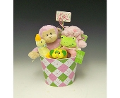 Baby Girl Bucket in Kirkland WA, Fena Flowers, Inc.