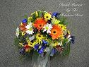 Colorful Daisy Bouquet in Elkland PA, The Rainbow Rose