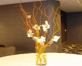 Curly Willow and Orchid Centerpiece in Campbell, California, Jeannettes Flowers
