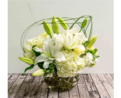 Houston Flowers - Symphony in White - The Empty Vase of Houston