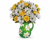 Teleflora's Happy Daisies Bouquet in Waterbury CT, The Orchid Florist