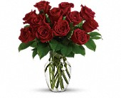 Enduring Passion - 12 Red Roses in El Cerrito CA, Dream World Floral & Gifts