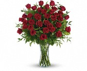 Breathtaking Beauty - 3 Dozen Long Stemmed Roses in El Cerrito CA, Dream World Floral & Gifts