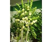 Greenton standing in Artesia, California, Pioneer Flowers