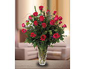 Two Dozen Rose Arrangement in Dallas TX, In Bloom Flowers, Gifts and More