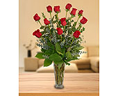 Deluxe Dozen Roses in Dallas TX, In Bloom Flowers, Gifts and More