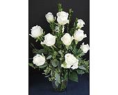 White Rose Splendor in Cherokee, Iowa, Blooming House