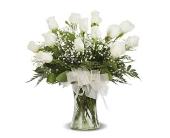 WHITE DOZEN ROSE ARRANGED in Gainesville, Florida, Floral Expressions Florist