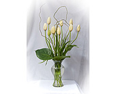 Be My Valentine Tulips in Marietta GA, K. Mike Whittle Designs Inc.