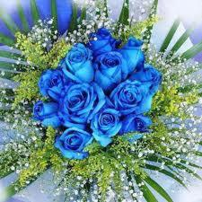 HK Style Blue Roses in Oakland CA, From The Heart Floral