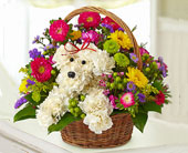 Flower Doggy Basket