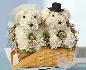 Bride and Groom Flower Doggies in Fairfax, Virginia, Greensleeves Florist
