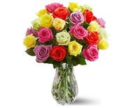 2 Dozen Multi-Colored Long Stemmed Roses Boxed  in Flower Delivery Express MI, Flower Delivery Express