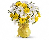 Teleflora's Upsy Daisy in Chesterton IN, The Flower Cart, Inc  800-493-8504